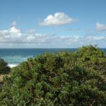 Indigo Bay Unit A View